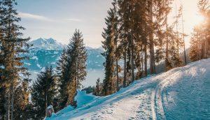 montaña-mont-rebei-nieve